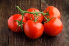 Körsbärsröda tomater på filialträbakgrundscloseupen Arkivfoton