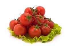Körsbärsröda tomater på vitbakgrund Royaltyfria Bilder