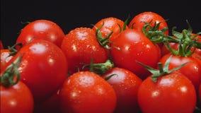 Körsbärsröda tomater som roterar på en platta stock video