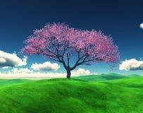körsbärsrött träd 3D i ett gräs- landskap royaltyfria foton