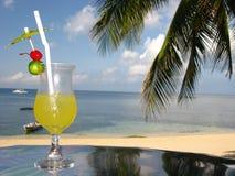 Köstlich frischer Fruchtsaft auf dem Strand Lizenzfreie Stockfotos