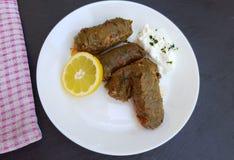 Köstliche angefüllte Weinblätter mit Reis und Fleisch Lizenzfreies Stockfoto