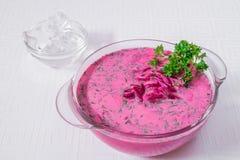 Köstliche, appetitanregende rosa Suppe mit roten Rüben und Kräuter in einer weißen Platte Horizontaler Rahmen stockfoto