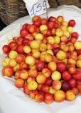 Köstliche Aprikosen Stockfoto