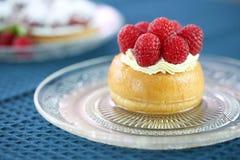 Köstliche Baba Rum Raspberry Dessert lizenzfreies stockbild