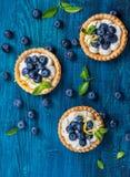 Köstliche Blaubeerentartlets Stockfotos