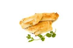 Köstliche chilenische empanadas Stockbild