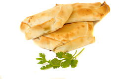 Köstliche chilenische empanadas Stockbilder