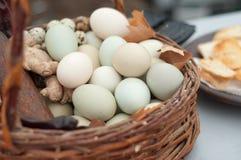 Eier in einem Weidenkorb Stockbilder