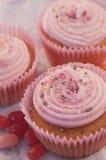 Köstliche Erdbeercremekleine kuchen mit Zuckerpet Lizenzfreie Stockbilder