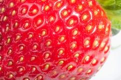 Köstliche Erdbeere Lizenzfreies Stockfoto