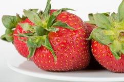 Köstliche Erdbeeren Lizenzfreies Stockbild