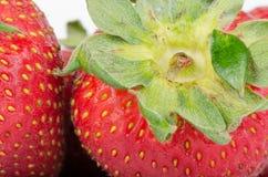 Köstliche Erdbeeren Lizenzfreie Stockfotografie