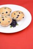 Köstliche gebildete Hauptmuffins mit Blaubeeren Stockbild