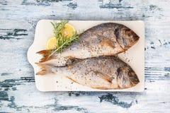 Köstliche gegrillte Seebrassenfische Stockfoto