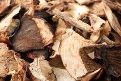 Köstliche getrocknete Scheiben von Pilzen als Hintergrund stockbild