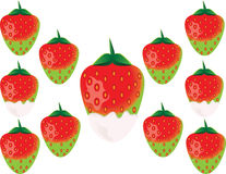 Köstliche grüne Erdbeere Stockfoto