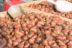 Köstliche Gruppe Kastanienfrüchte lizenzfreies stockfoto