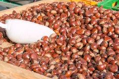 Köstliche Gruppe Kastanienfrüchte lizenzfreies stockbild