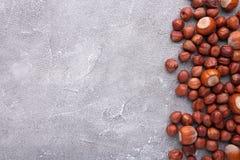Köstliche Haselnuss auf einem grauen konkreten Hintergrund lizenzfreies stockbild
