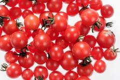 Köstliche kleine rote Tomaten Stockfoto