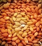 Köstliche Mandelnüsse Stockbild