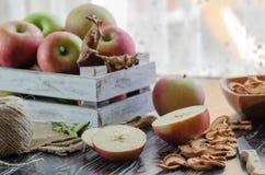 Köstliche neue rote Äpfel und Scheiben des getrockneten Apfels sind auf lizenzfreies stockbild