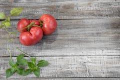 Köstliche organische rote Tomaten Tomaten auf altem Holztisch Stockfotografie