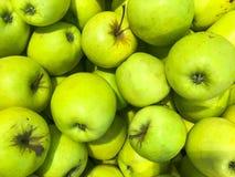Köstliche orientalische helle Äpfel des schönen grünen reifen südlichen natürlichen süßen Vitamins, Früchte Beschaffenheit, Hinte lizenzfreie stockbilder