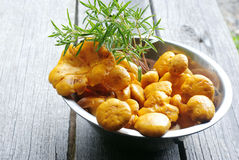 Köstliche Pilze Lizenzfreies Stockbild