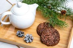Köstliche Plätzchen mit Schokoladenkrumen Geschmackvolle Nachtischnahrung im Abschluss oben Schokoladenplätzchen dienten auf Behä lizenzfreies stockbild