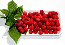 Köstliche rote Beere lizenzfreie stockfotografie