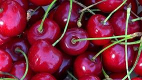 Köstliche rote Kirschbeeren Drehende Drehscheibe stock video footage