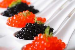 Köstliche rote und schwarze Kaviarnahaufnahme in den Löffeln horizontal Lizenzfreies Stockfoto