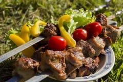 Köstliche saftige Kebabs Stockbild