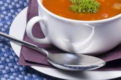 Köstliche Schüssel frische gebildete Suppe Stockbild