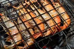 Köstliche schauende Garnele auf dem Grill Lizenzfreies Stockfoto