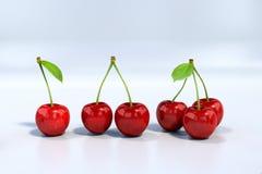 Köstliche schauende rote Kirschen ausgerichtet, sehr ausführlich lizenzfreie abbildung