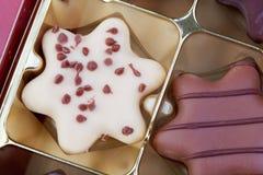 Köstliche Schokoladenplätzchen Lizenzfreies Stockbild