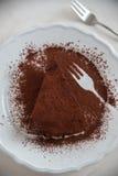Köstliche Schokoladentörtchentorten lizenzfreies stockfoto