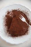 Köstliche Schokoladentörtchentorten stockfotografie