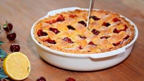 Köstliche selbst gemachte Cherry Pie mit einer flockigen Kruste, die eine Kirschtorte schneidet stock video