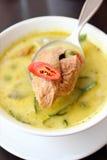 Köstliche siamesische Nahrung: grüner Curry Lizenzfreie Stockbilder