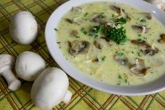 Köstliche Suppen der köstlichen Suppen, selbst gemachte, ausgezeichnete klassische Gastronomie stockbilder