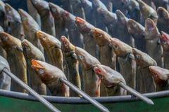 Köstliche traditionelle niederländische geräucherte Aale auf Aufsteckspindeln Lizenzfreies Stockfoto