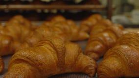 Köstliche und köstliche Gebäckhörnchen liegen auf einem Behälter Süßigkeitenproduktion, Hintergrund, Kopienraum stock video