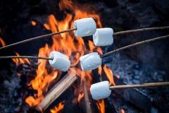 Köstliche und süße Eibische auf Stock über dem Feuer lizenzfreie stockbilder
