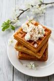 Köstliche Wiener Waffeln mit Zusammensetzung Eis creamon Untertasse im Frühjahr auf hölzernem Hintergrund Lizenzfreies Stockfoto