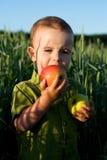 Köstlicher Apfel Lizenzfreie Stockfotos