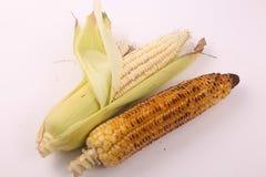 Köstlicher gebratener Mais lizenzfreies stockfoto